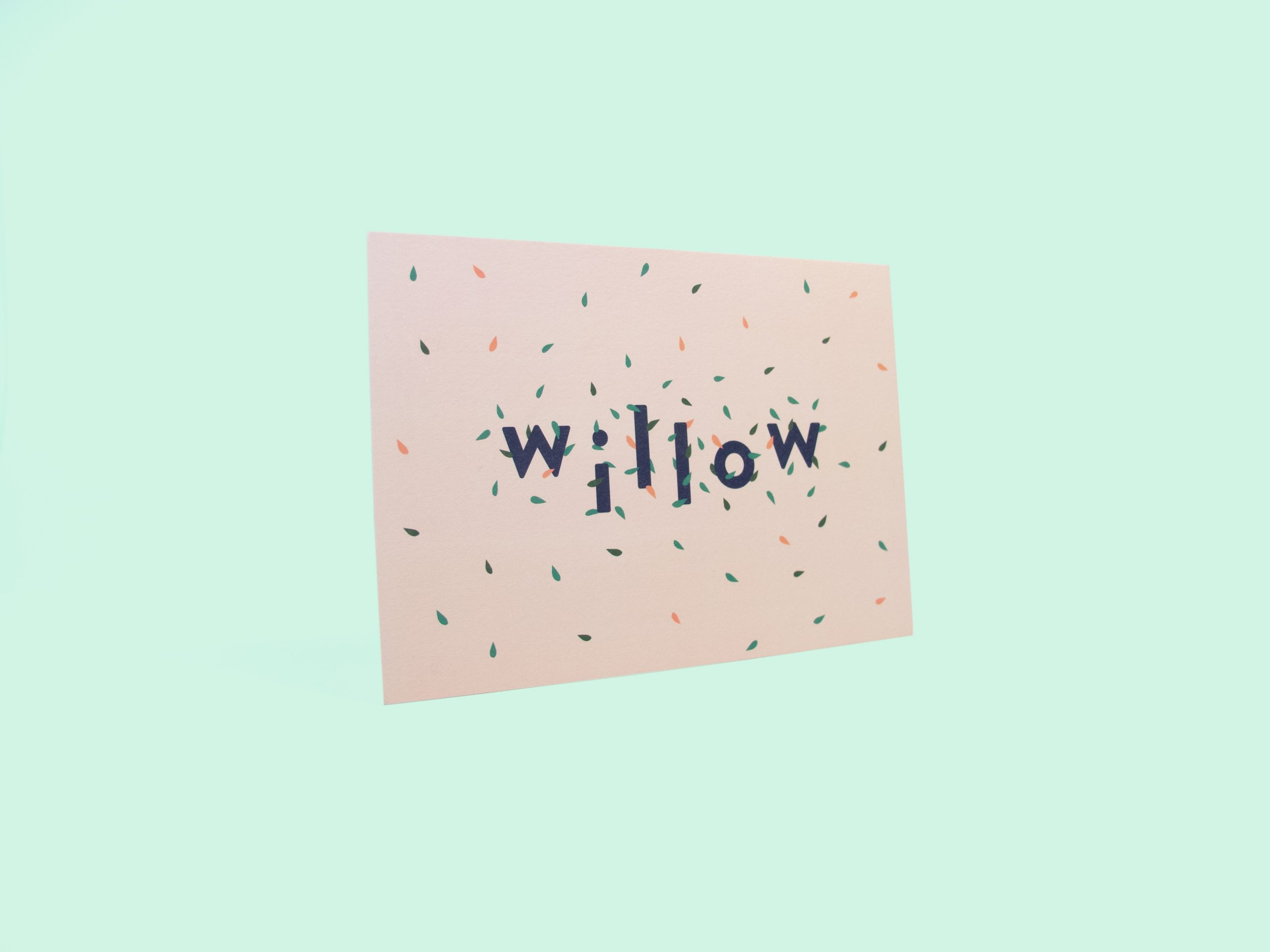 Willow_3