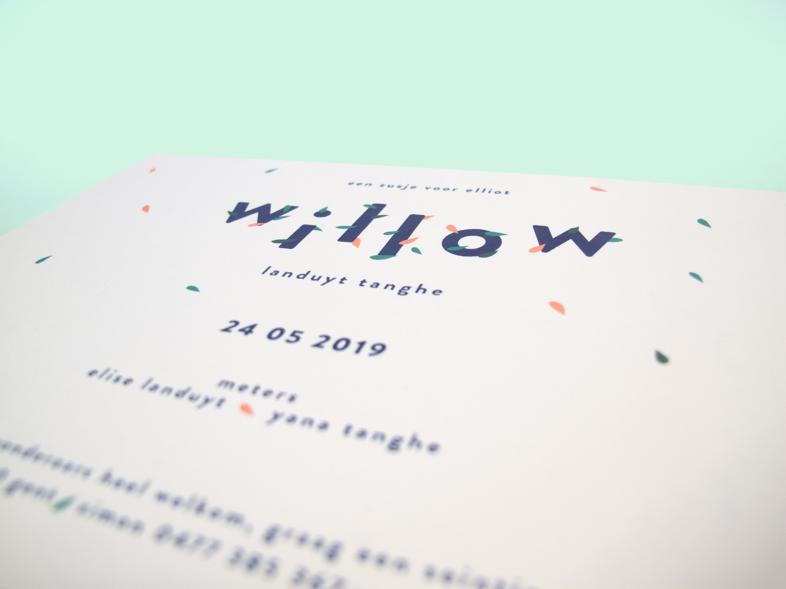 Willow_4