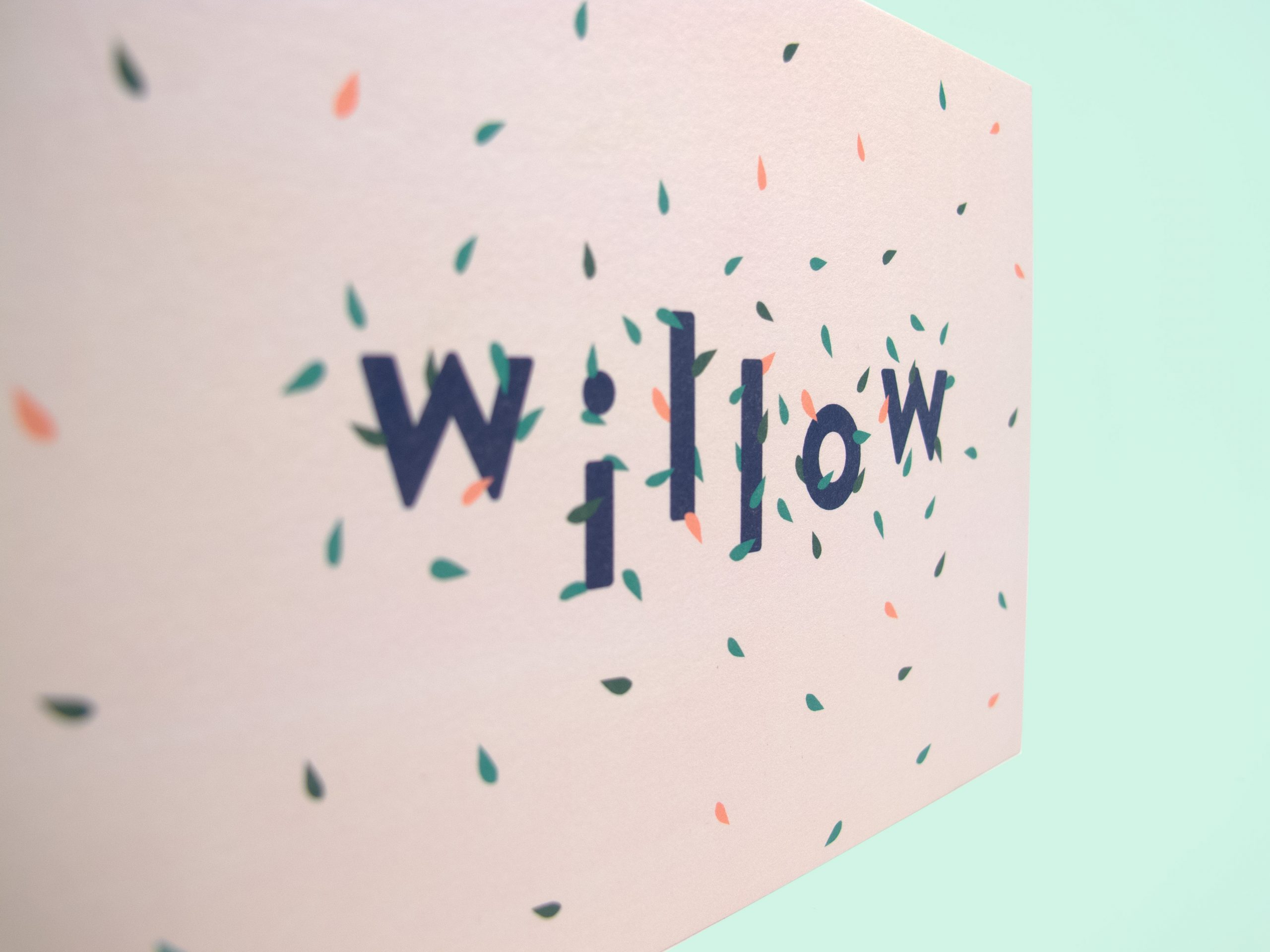 Willow_5